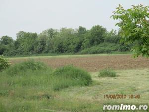 De vanzare teren arabil pentru  pepiniere si sere in zona Calea Sagului - imagine 1