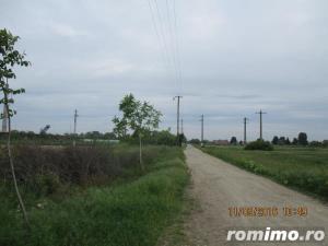 De vanzare teren arabil pentru  pepiniere si sere in zona Calea Sagului - imagine 6