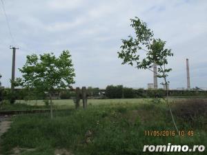 De vanzare teren arabil pentru  pepiniere si sere in zona Calea Sagului - imagine 7