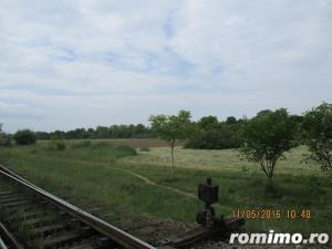 De vanzare teren arabil pentru  pepiniere si sere in zona Calea Sagului - imagine 4