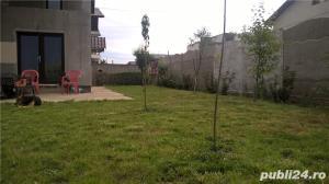 Cernica Padure - imagine 18