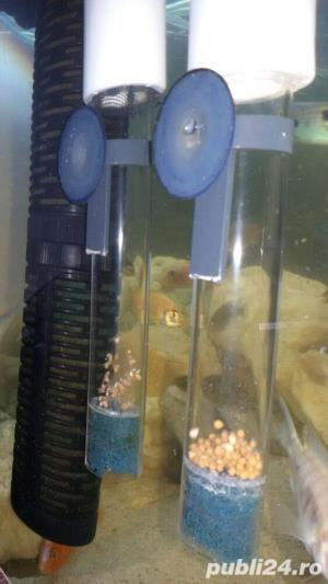 egg tumbler ( incubator icre ciclide )  - imagine 3