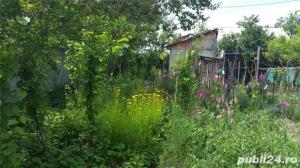 casa bca Ghimpati - imagine 6