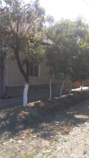 Vand casa la Pustinis  - imagine 9