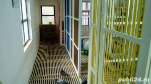 Boxe, odihnitoare, cuibare pentru porumbei - imagine 5
