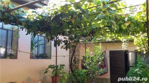 vand casa in Criciova - imagine 17