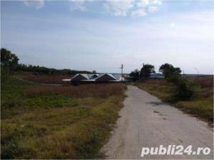 Casa boiereasca pe malul lacului Mostistea+ferma+spatii comerciale - imagine 6