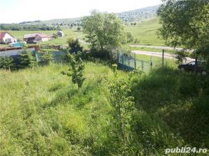 Teren Jelna - Bistrita  - imagine 4