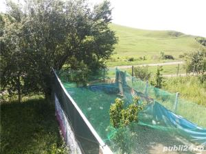 Teren Jelna - Bistrita  - imagine 6
