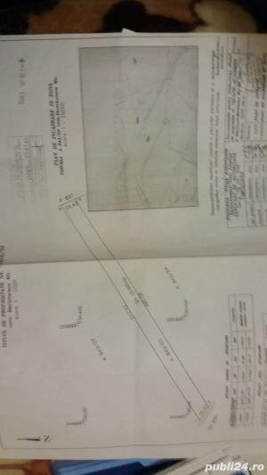 PROPRIETAR vând sau inchiriez teren 10.000 mp - imagine 2