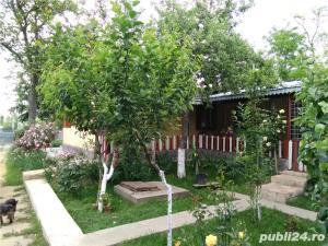 Casa cu mult teren Suhurlui - Galati - imagine 5