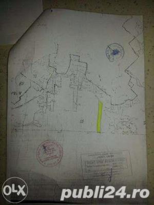 Oferta rate-Teren Iasi Sat Paun-BUCIUM (linga padure) 8000 m2 cu utilitati in zona, accept si auto - imagine 2