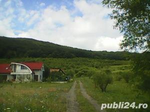 Teren de vanzare zona Viisoara - imagine 2