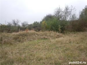 teren intravilan de inchiriat Timisoara, Ronat - imagine 3