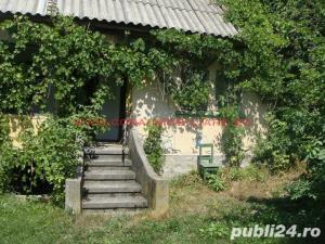 vanzare casa si teren cetateni judet aeges - imagine 5