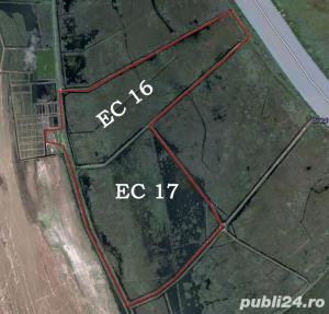 Teren 736 hectare, imobile 1500mp, Delta Dunarii  Chilia Padurea Letea, multiple destinatii, 3.5 mil - imagine 1