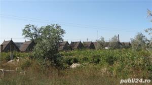 Teren 736 hectare, imobile 1500mp, Delta Dunarii  Chilia Padurea Letea, multiple destinatii, 3.5 mil - imagine 6