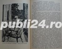 Marturii despre om si poet, Ion Pillat, 1946 - imagine 9