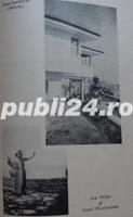 Marturii despre om si poet, Ion Pillat, 1946 - imagine 12