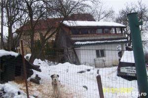 Vand casa mica cu mansarda + 2 ari de teren - imagine 4