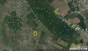 Teren, Sabareni, 32 ml deschiderea la DN 602 ! - imagine 4