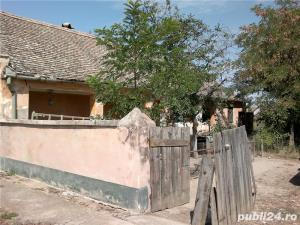 Vand casa in Gad comuna Ghilad, judetul Timis - imagine 4