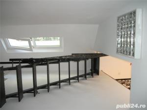 Vila Podul Grant, 8 euro/mp- Office Firme, Punct de Lucru- 250 mp - imagine 4