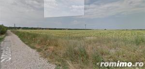 Teren Dumbravita ,spre padure,35 euro mp  - imagine 6