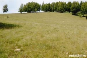 De vanzare teren 50.900 mp Aita Medie  - imagine 2
