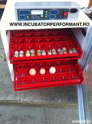 Incubator oua gasca automat - imagine 9