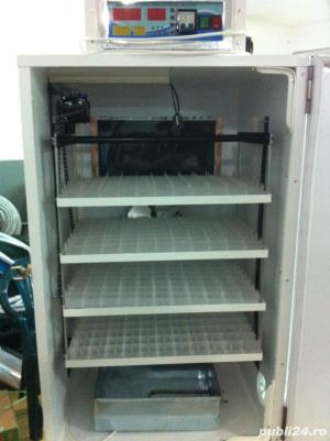 Incubator oua gasca automat - imagine 1