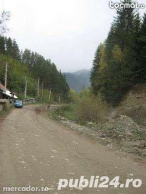 teren munte schimb cu auto - imagine 1