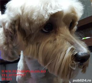 Tuns caine/Pachet cosmetic premium canin*  - imagine 4