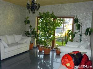 Vila in Timisoara zona Rudolf Walter - imagine 1