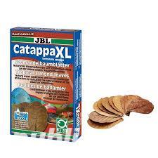 frunze catappa pentru acvariu creveti sau pesti  - imagine 1