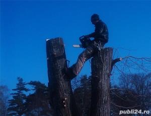 Pregatim tineri in vederea angajarii pe post de alpinist utilitar - imagine 2