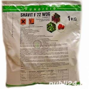 Sulfat de cupru,shawit,zeama bordeleza,sulf muiabil - imagine 4