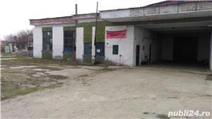 Complex productie situat in Zimnicea, str. Giurgiului, nr. 108, TR - imagine 2