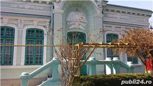 Casa si teren, Str.Tipografiei nr.2, gard in gard cu Gradina Copou - imagine 7