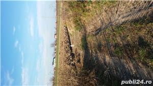 Teren intravilan construibil 2.600mp in Calugareni (jud. Giurgiu), la 23km de Bucuresti - imagine 5