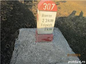 Teren 7200 mp, Filipesti, jud. Bacau - imagine 5