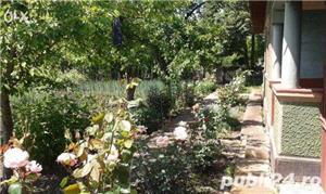 Vand casa de caramida in com Toporu, jud Giurgiu - imagine 3