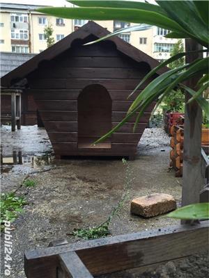 Cusca pentru caine din lemn gros - imagine 3