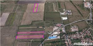 Vand teren 30.000 mp+ 20.000 mp, compact, in Freidorf, zona industriala - imagine 2