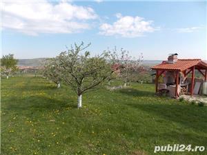 Livada pe teren intravilan, Orlat, jud. Sibiu 6700mp - imagine 1