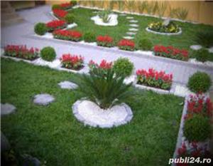 Piatra naturala - imagine 18