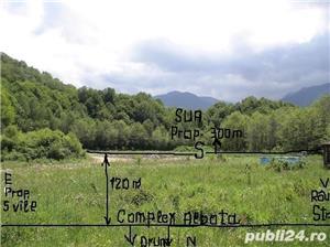 P.F.Arpasu de sus-Albota Sibiu 6000mp  teren intravilan utilitati,munte,rau,padure,strada asfaltata - imagine 3