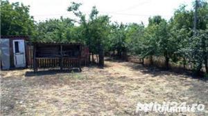 Vand casa cu curte si dependinte zona Turnu Magurele ,Traian, Teleorman - imagine 7