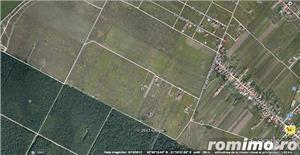 Oferim  teren de case triplex, 916  mp zona Dumbravita-Giarmata Vii - imagine 3