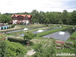 P.F.Arpasu de sus-Albota Sibiu 6000mp  teren intravilan utilitati,munte,rau,padure,strada asfaltata - imagine 13